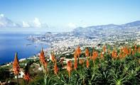 Остров Мадейра фото