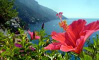 Амальфи ФОТО (Италия)