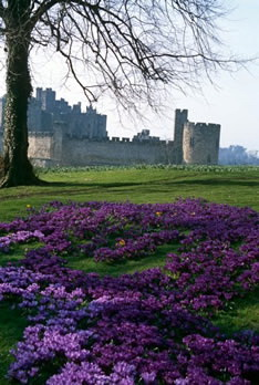 Замки Великобритании