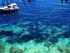 Остров Брач (Хорватия)