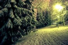 Зимний курорт Куопио (Финляндия)