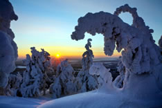 Горнолыжный курорт Рука (Финляндия)