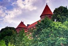 Старинные замки Польши