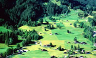 Фото Гриндельвальда (Швейцария)