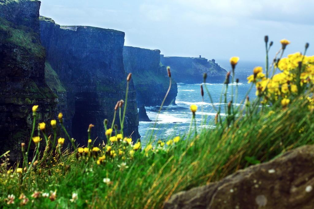 Панорама утесов Мохер в Ирландии