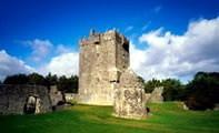 Замок Онанэйр в Ирландии