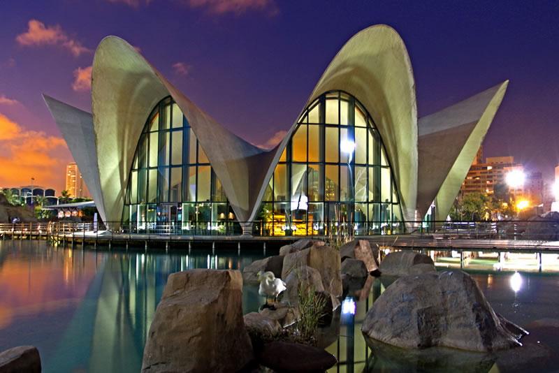 Океанариум Валенсии в ночной подсветке еще более впечатляющее зрелище, чем все увиденное днем. Пожалуй, после экскурсии по всем залам и отделам Океанографического музея стоит дождаться вечера и сделать вечерние фото на память