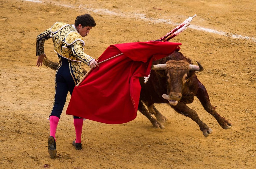 an overview of the spectacle and tradition of bullfighting el toro bravo in spain